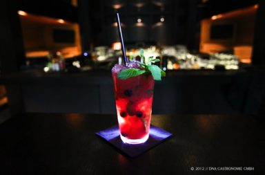 Blackberry Mojito // Cocktail of the month // April 2011