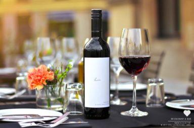 2011 Blauer Zweigelt – Claus Preisinger – Rotweinempfehlung Mai